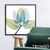 TROMSO北歐時代風尚有框畫-藍綠葉脈