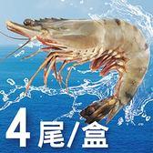 活凍特級大草蝦4尾入/400g±10%/盒#現撈A+等級#吃得出新鮮滋味
