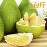 【鶴柚】花蓮鶴岡得獎41年老欉文旦1箱(5台斤)
