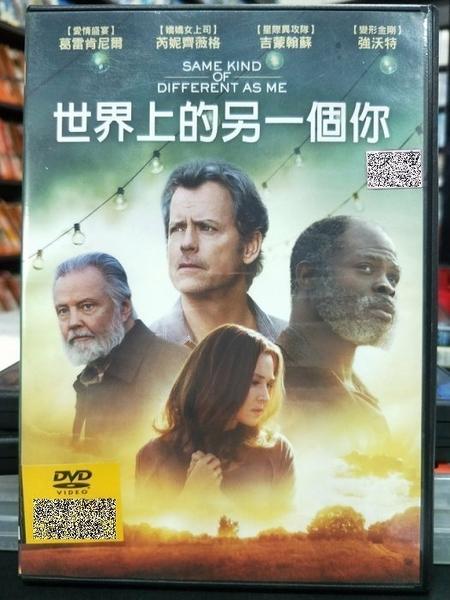 挖寶二手片-P51-033-正版DVD-電影【世界上的另一個你】-芮妮齊薇格 強沃特 葛雷肯尼爾(直購價)