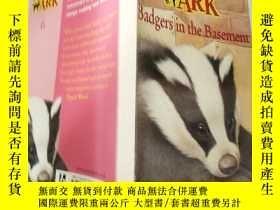 二手書博民逛書店badgers罕見in the basement:地下室 ..的 獾Y200392