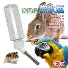 金德恩 美國製造 LIXIT鸚鵡鳥鼠兔類45度鋼管雙珠出水設計飲水瓶120ccc附彈簧掛繩