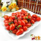 【果之家】高雄美濃嚴選玉女小番茄6盒入(每盒1台斤)