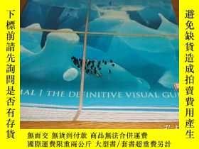 二手書博民逛書店Animal:罕見The Definitive Visual G