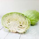 【預購】福山 有機高麗菜 20斤(約4~6顆)
