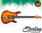 【小麥老師 樂器館】Musicman Sterling JP 100D 電吉他