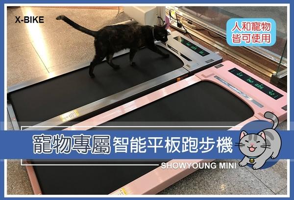 【 X-BIKE 晨昌】寵物跑步機/小漾智能型跑步機/平板跑步機__小漾 SHOWYOUNG MINI(此賣場不含體脂計)