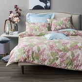 HOLA 森巴純棉床包兩用被組 雙人