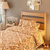 搖粒絨 / 雙人【土耳其狂想曲】床包兩用毯組  頂級搖粒絨  戀家小舖台灣製AAW215