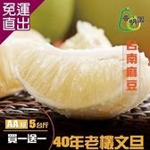 《普明園》 (買一送一)AA級台南麻豆40年老欉文旦 (5台斤/箱)【免運直出】