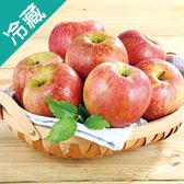 智利富士蘋果 64 8入禮盒【愛買冷藏】
