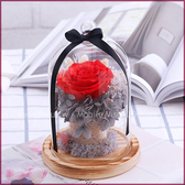 鮮花製成永生玫瑰不凋花(玻璃罩+木底座)-紅色遇見 微景觀瓶 乾燥花 情人節禮物 生日禮物