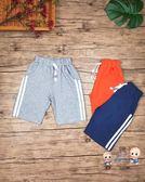 運動褲 夏季半褲短褲運動褲棉布男童兒童中大童薄料 3色
