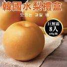 【果之蔬-全省免運】嚴選韓國巨無霸水梨禮盒X1盒(8顆/盒 每顆約650g±10%)