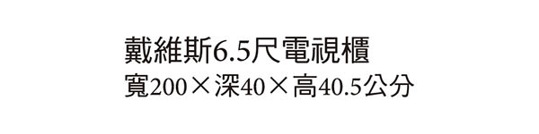 【森可家居】戴維斯6.5尺電視櫃 7JX170-4 長櫃