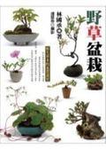 (二手書)野草盆栽