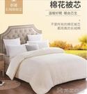 被子 棉花被芯一級優質長絨棉純棉花被子冬被手工棉被棉絮床墊墊被YYJ【快速出貨】