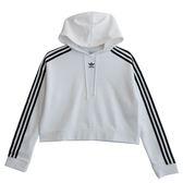 Adidas 愛迪達 CROPPED HOODIE  連帽長袖上衣 DX2321 女 健身 透氣 運動 休閒 新款 流行