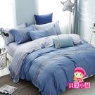 天絲床罩組~ TENCEL 頂級100%天絲《威尼斯》標準雙人七件式床罩組