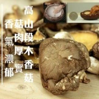 有機轉型期高山段木香菇(大菇)