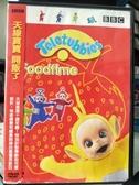 挖寶二手片-B34-正版DVD-動畫【天線寶寶:開飯了】-國英語發音(直購價)
