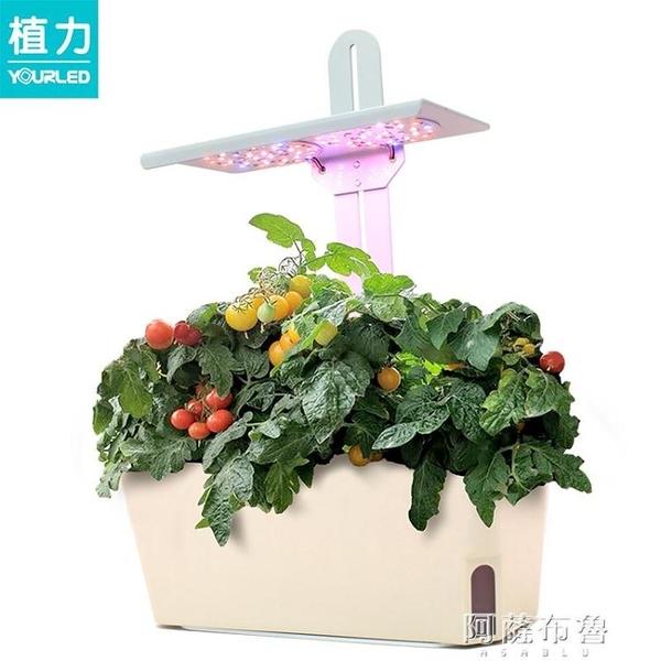 植物燈 植力【智慧種植機】家庭室內種菜蔬菜番茄育苗多肉補光燈植物生長 阿薩布魯