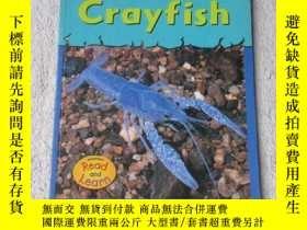 二手書博民逛書店Crayfish罕見(Musty-Crusty Animals)