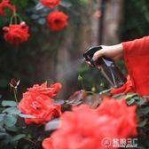 噴霧瓶手壓式澆花壺園藝工具盆景盆栽綠植裝置藝術   電購3C