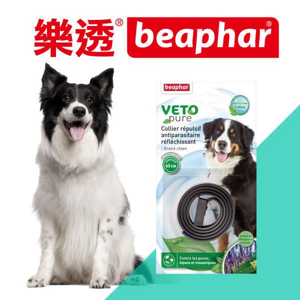 樂透beaphar‧ 綠葉愛犬印度紫丁香蚤圈65cm(反光黑)