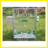 大型加高繁殖籠大號鳥籠虎皮鸚鵡玄風八哥養殖籠鍍鋅金屬文鳥籠子