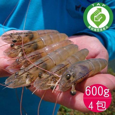 唐大哥酵素白蝦24-36尾4包