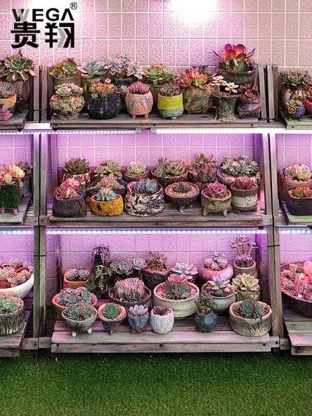 貴翔 多肉補光燈上色全光譜LED蘭花卉育苗食蟲草仿太陽植物生長燈  極有家 ATF