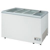 至鴻T-GEMA 玻璃式冷凍櫃【6尺 冰櫃】型號:NI-636