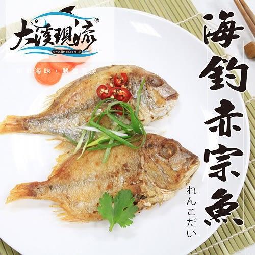 野生海釣 赤鯮魚 ( 中尾 300g±10%  一公斤 ) 【大溪現流】