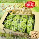 【果之蔬-全省免運】日本晴王麝香葡萄原裝X1箱(8串/箱 每串約600g±10%)