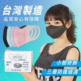 Incare 台灣製3D立體小臉口罩-100入成人L 藍色*1+紫色*1