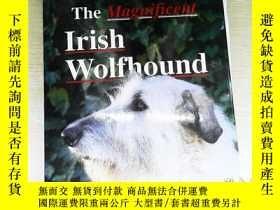 二手書博民逛書店The罕見magnificent irish wolfhound 書有破損 不少頁Y253683 . .