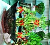 吉祥船型開運竹水耕盆栽 活體萬年青盆栽 室內辦公室盆栽 開幕喬遷開店賀禮 送禮首選