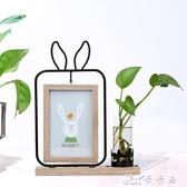 創意ins北歐個性6寸鐵藝水培植物雙面相框 擺臺客廳實木畫框擺件 卡卡西