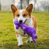 綺敏訓練小狗狗玩具泰迪金毛耐咬磨牙發聲比熊哈士奇幼犬寵物用品『小淇嚴選』