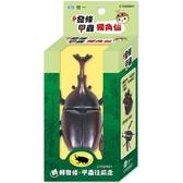 發條甲蟲:獨角仙