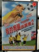 挖寶二手片-D61-正版DVD-電影【我的狗腿很厲害2】-尼克莫倫 傑克湯姆斯(直購價)