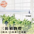 臺灣製造 三波長 三防燈 50瓦LED全...