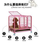 狗籠子泰迪小型犬中型犬帶廁所寵物加粗狗狗籠子狗窩兔子籠貓籠子igo