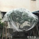防鳥網 楊梅網罩櫻桃防蟲防風防鳥網水果樹罩多肉蓮霧桃樹羅幔大棚專用罩 阿薩布魯