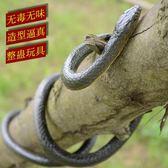 蛇玩具仿真 兒童玩具蛇仿真蛇 假軟蛇 整蠱恐怖嚇人玩具 動物模型WZ2501 【極致男人】TW