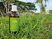 檸檬草 Lemongrass - 單方按摩精油 SPA經絡放鬆按摩油 美體精油 舒壓按摩精油 刮痧