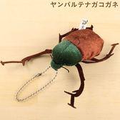 Hamee 日本 森林昆蟲 絨毛娃娃 掌上型玩偶 珠鍊吊飾 掛飾 (長臂金龜) 390-910782