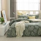 鴻宇 雙人特大兩用被套床包組 100%精梳純棉 莫凡比 台灣製C20103
