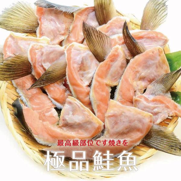 【超值免運】急凍鮭魚下巴2包組(500公克/1包)
